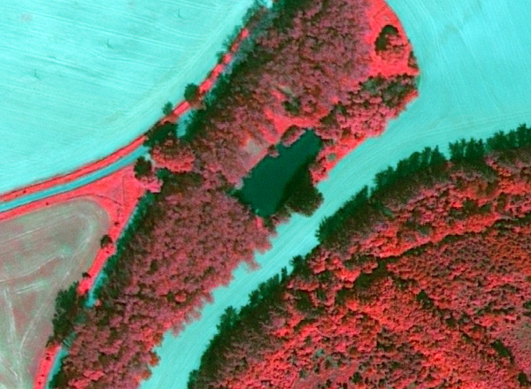 infracerveny-snimek-lesy-u-mecina-worldview2-digital-globe